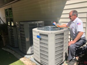 AAA Professional performing a furnace check
